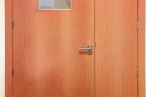 puerta538